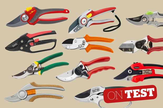10 best secateurs