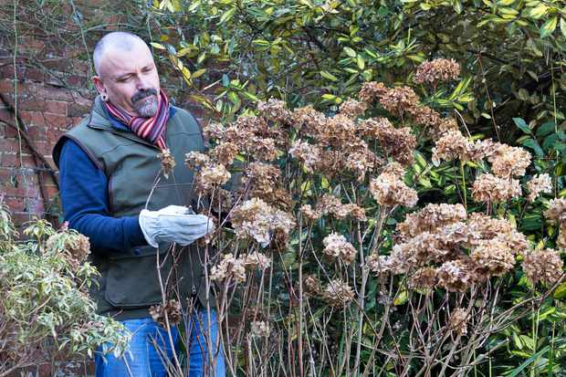 Autumn-pruning Masterclass at Inspired Villages