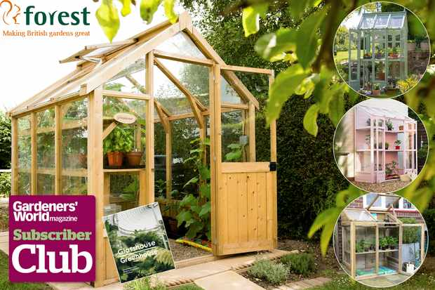 Subscriber competition to win a greenhouse from Forest Garden