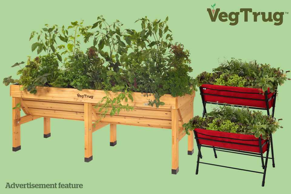 Win a VegTrug prize bundle