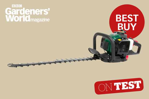 Webb HC600 hedge trimmer review from BBC Gardeners' World Magazine