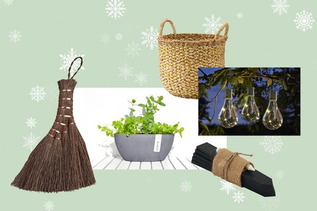 50 Of The Best Gardening Gifts For 2020 Bbc Gardeners World Magazine