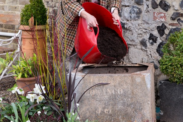 Reduce your carbon footprint - use peat-free compost