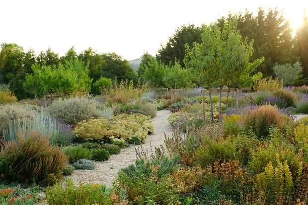 Gardens of Provence with Adam Frost - private garden in Alpilles