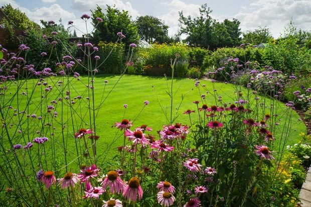 Beginner gardening tips - understanding your garden