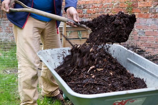 Reduce your carbon footprint - make your own mulch