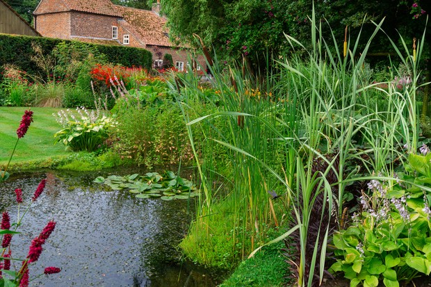 Reduce your carbon footprint - dig a pond. Getty Images