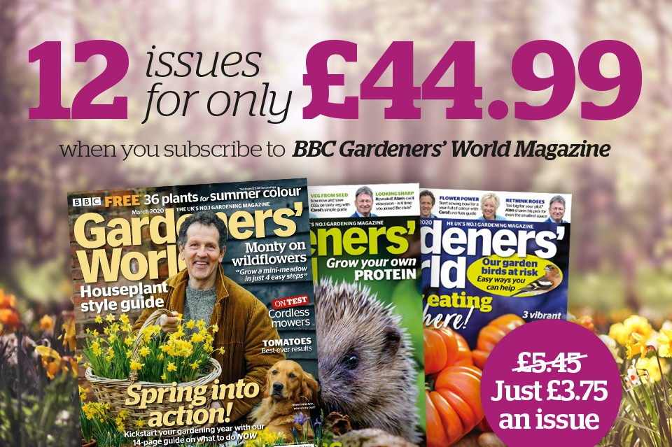 Save 31% on a BBC Gardeners' World Magazine subscription with this offer