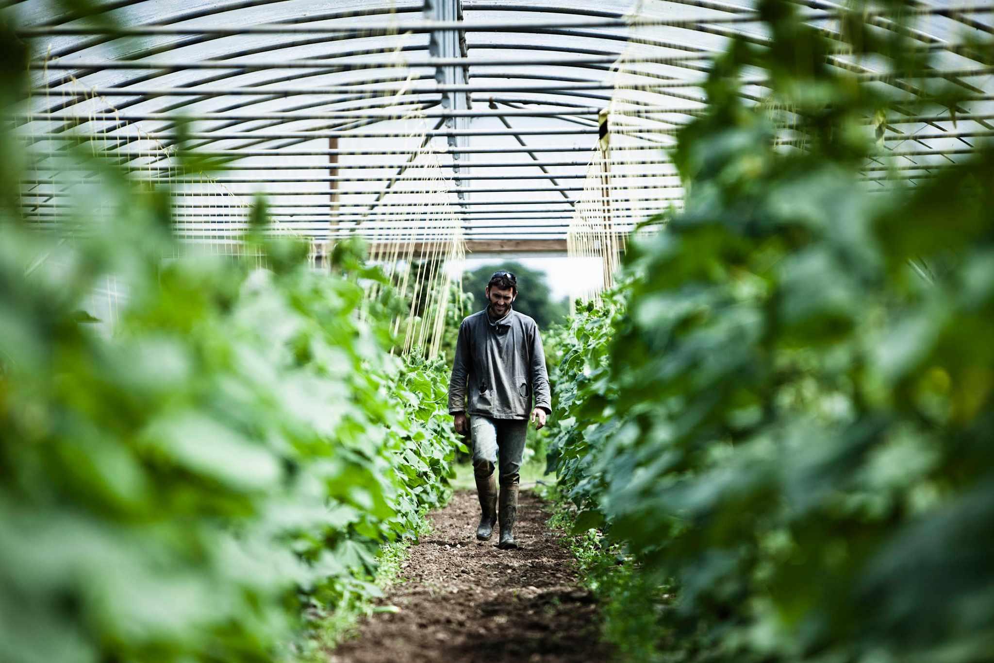 Daylesford Organic Farm