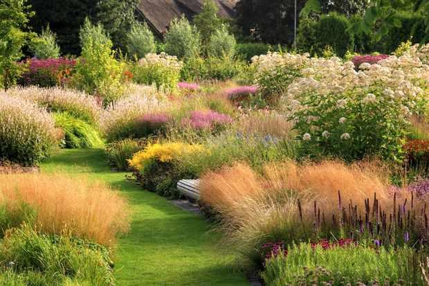 Piet Oudolf's garden at Vlinderhof