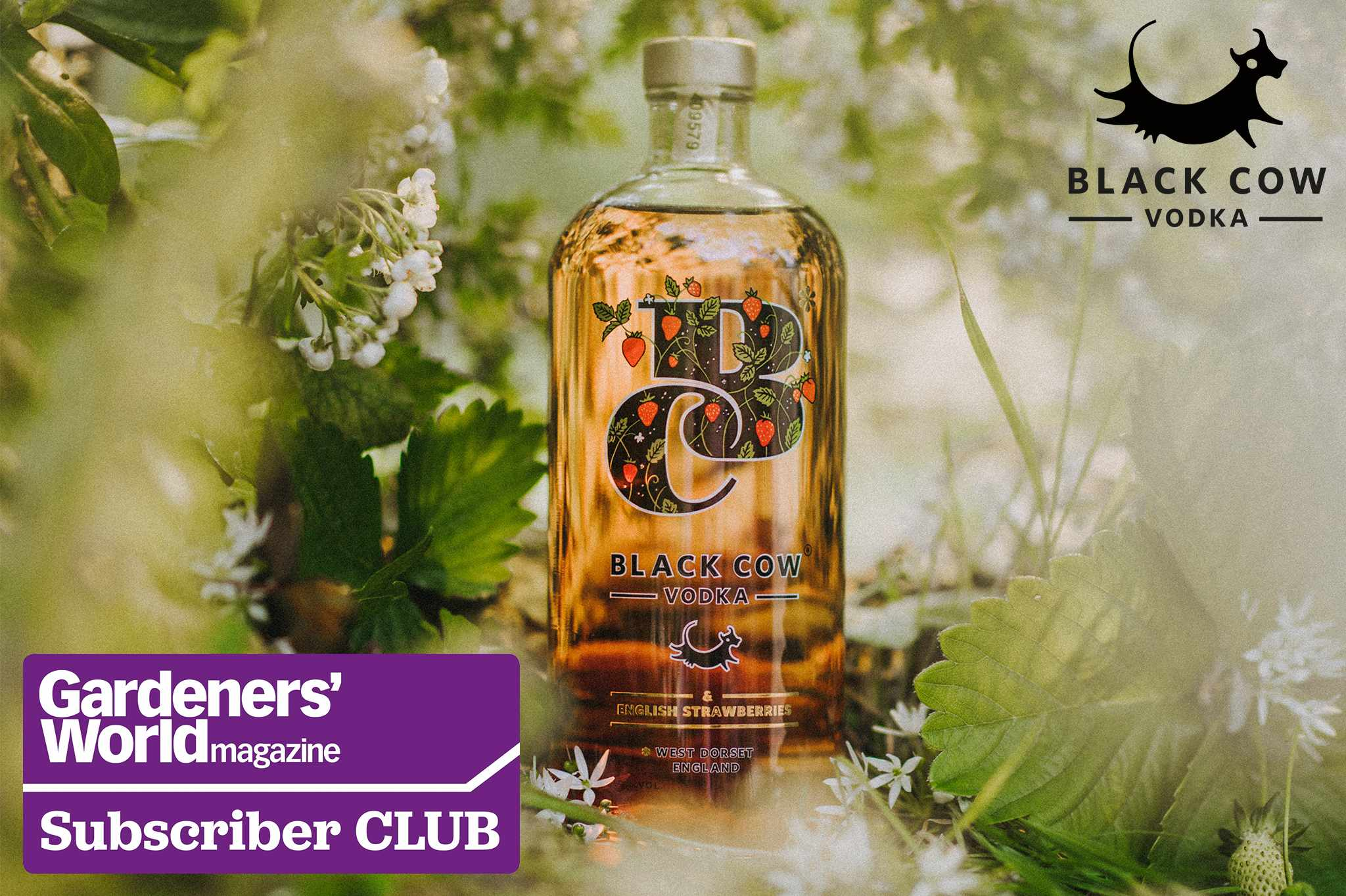 Exclusive Subscriber Club: Win a deluxe hamper from Black Cow Vodka, worth over £300
