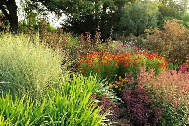Mid-Summer Border at Borde Hill Garden