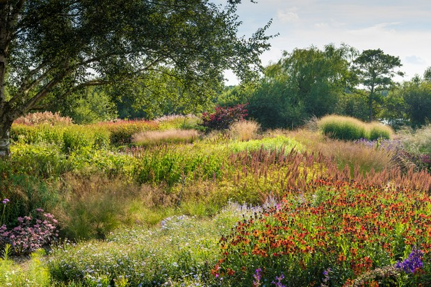 The Millennium Garden at Pensthorpe Natural Park