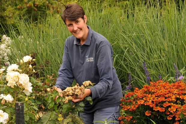 Head Gardener, Fran Clifton