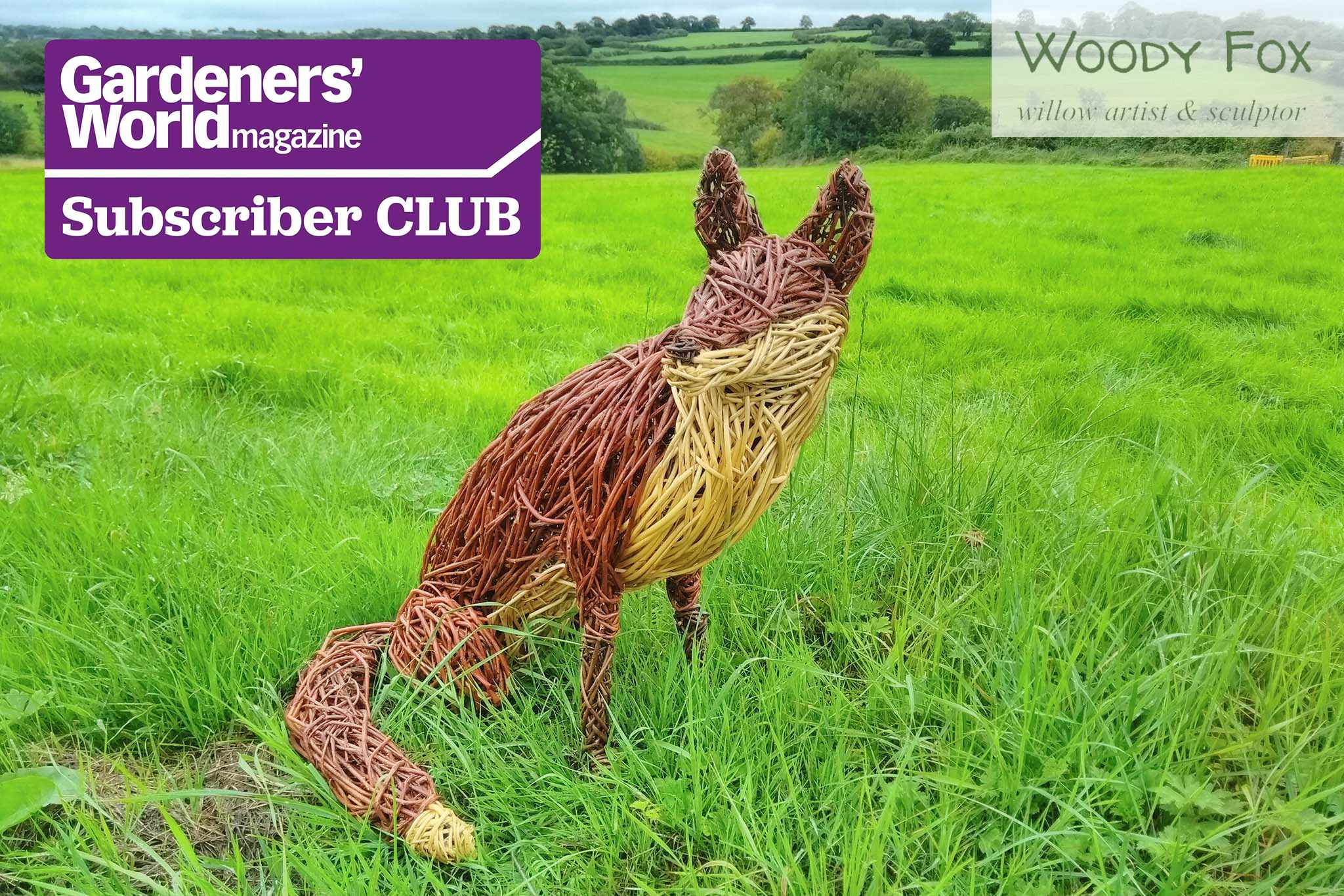 Subscriber Club: Win a willow fox sculpture from Woody Fox Willow, worth £275