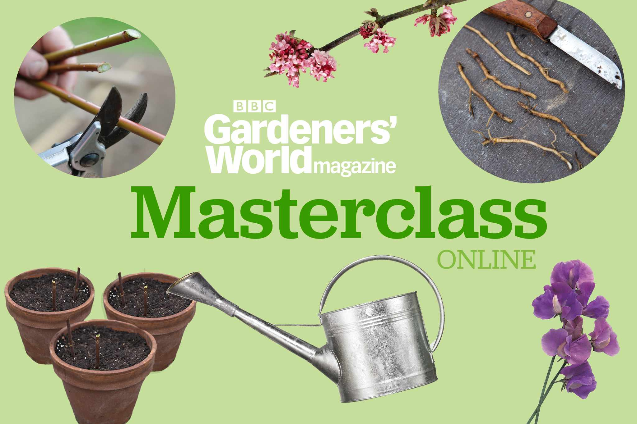 Success with Propagation: Easily Grow Free Plants - Masterclass online from BBC Gardeners' World Magazine