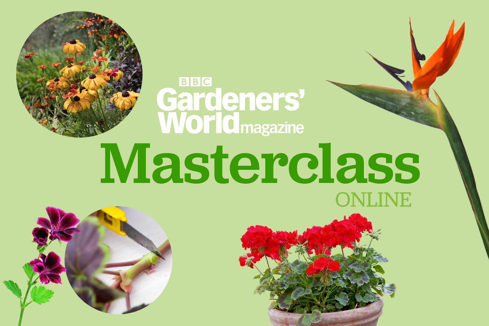 BBC Gardeners' World Masterclass Series - Summer
