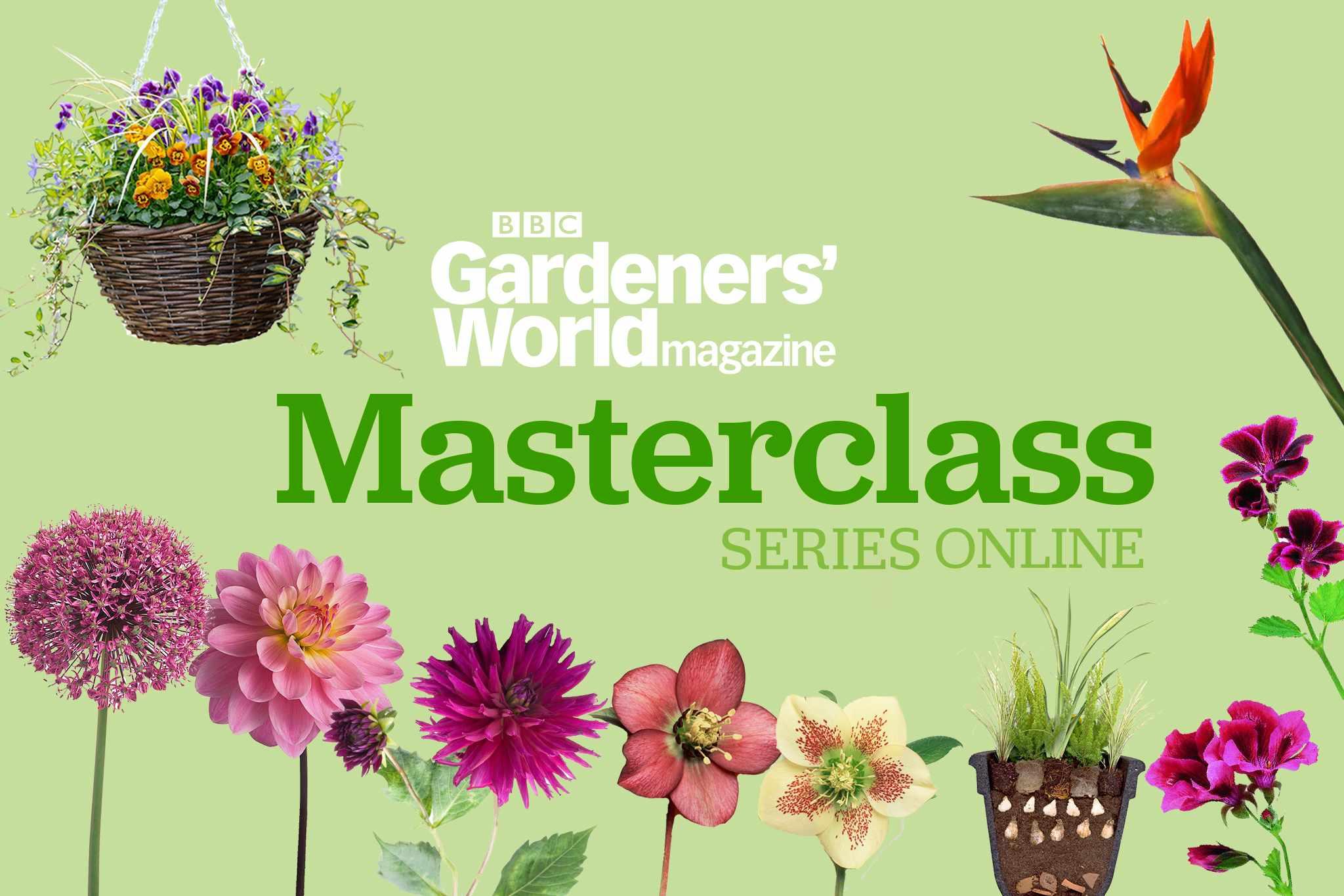 BBC Gardeners' World Magazine Masterclass Online: Year-Round Colour in Your Garden series
