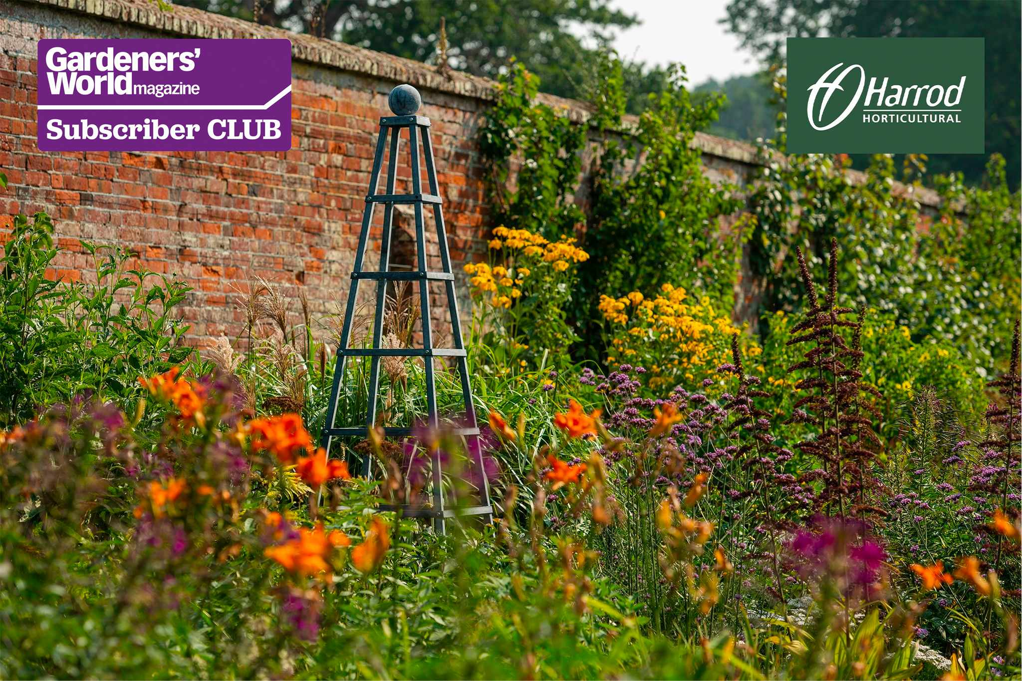 Win a hand-crafted plant support by Harrod Horticultural - BBC Gardeners' World Magazine