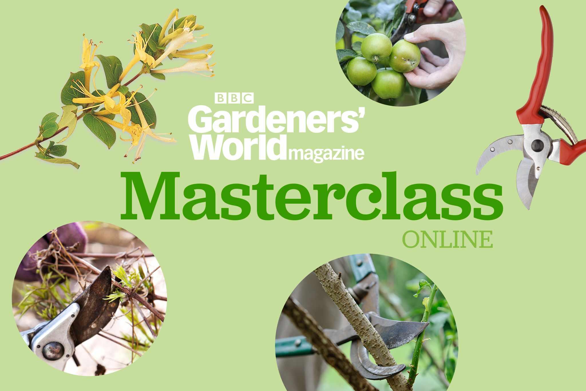 BBC Gardeners' World Magazine Masterclass Online: Autumn Pruning