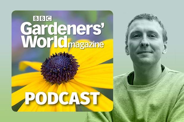 Beginner gardening with Joe Lycett