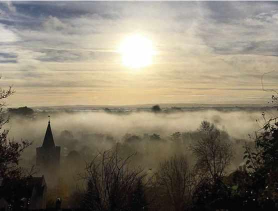Photowalk early morning mist