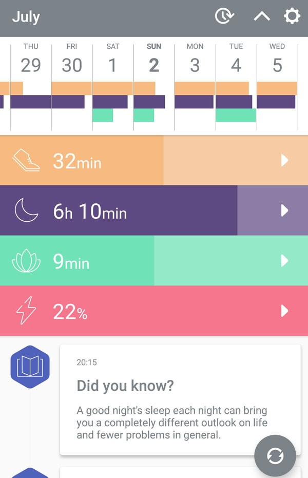 Bellabeat leaf app daily screen