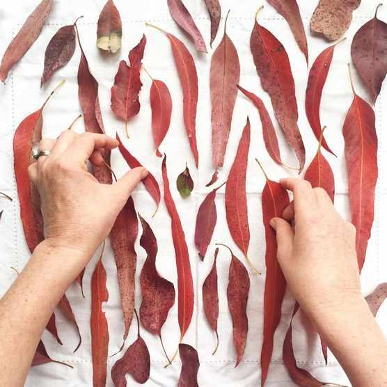 Creative artist Ellie Beck