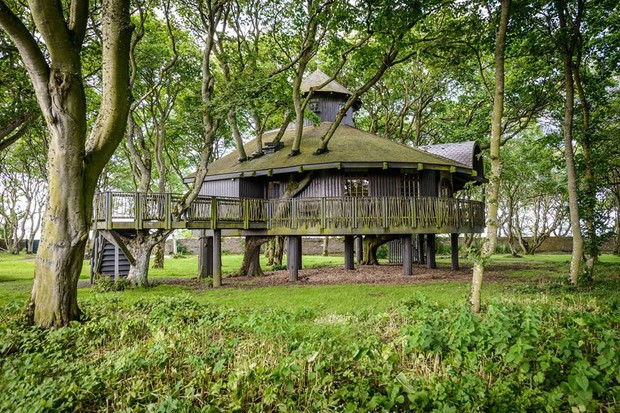 Ackergill Tower Hotel Treehouse