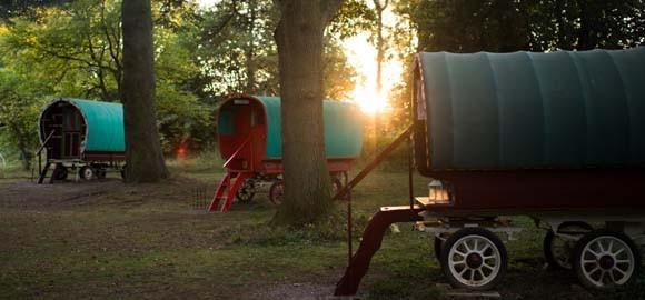 Copper Beech Glade caravans