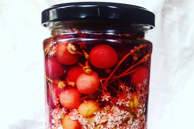 Wild cherry and elderflower pickles