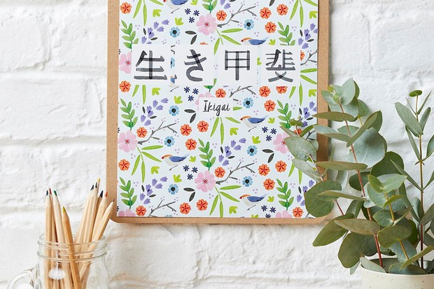 Ikigai illustrated poster