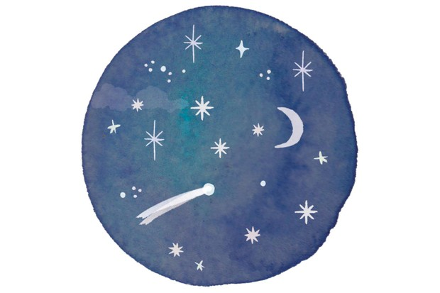 Starry night illustration by Holly McCulloch