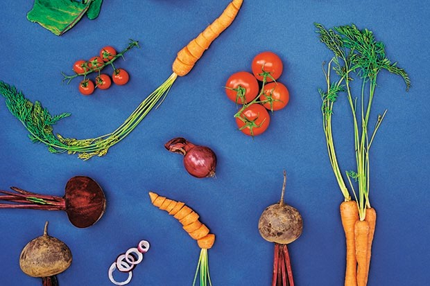 Assorted vegetables on a blue background