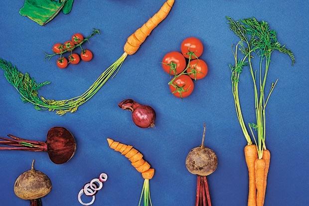 Assorted vegetables on a blue background