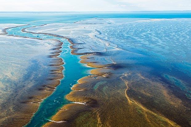 Aerial view of Montgomery Reef, Kimberley, Australia
