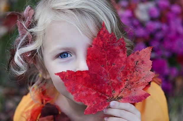 A child outdoors holding an autumn leaf