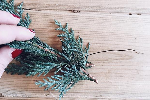 Choose your wreath foliage