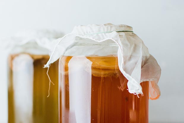 Jars of kombucha (fermented black tea)