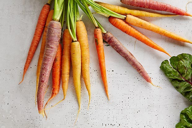 Bunch of carrots with soil