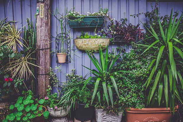 How to garden mindfully