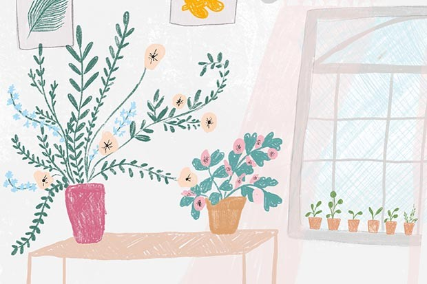 Illustration of plants on a table by Becki Clark