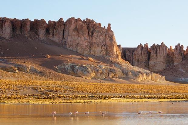 The Atacama desert – complete with flamingos!