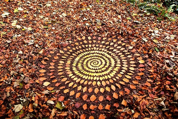 Art using autumn leaves created by James Brunt