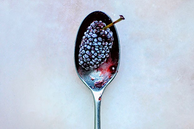 Blackberry on a spoon