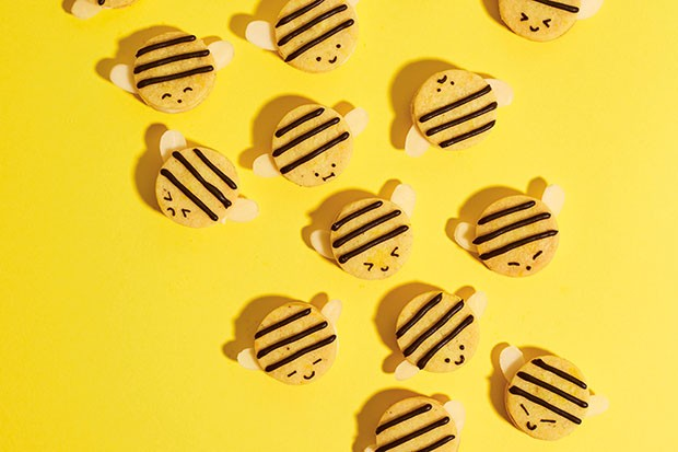 Honey bee biscuits recipe
