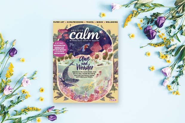 Calm Cover 16