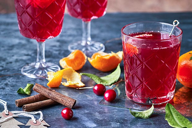 Alcohol-free Christmas cranberry cordial recipe
