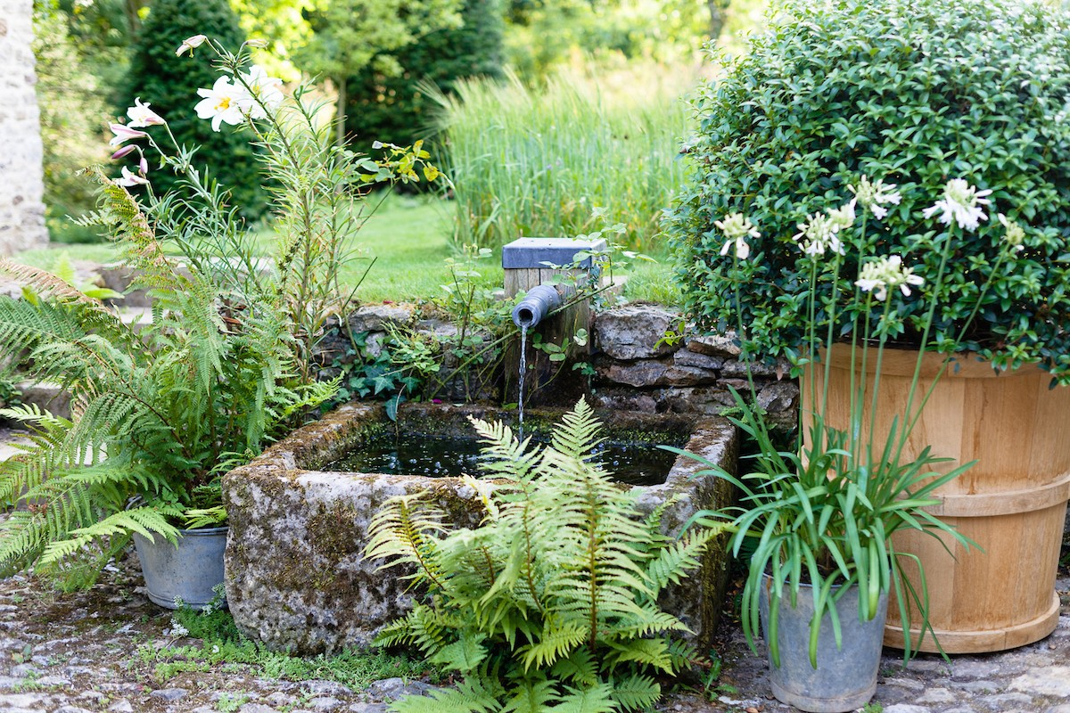 A water feature using an overflowing pipe where water falls into a moss covered stone basin surrounded by ferns