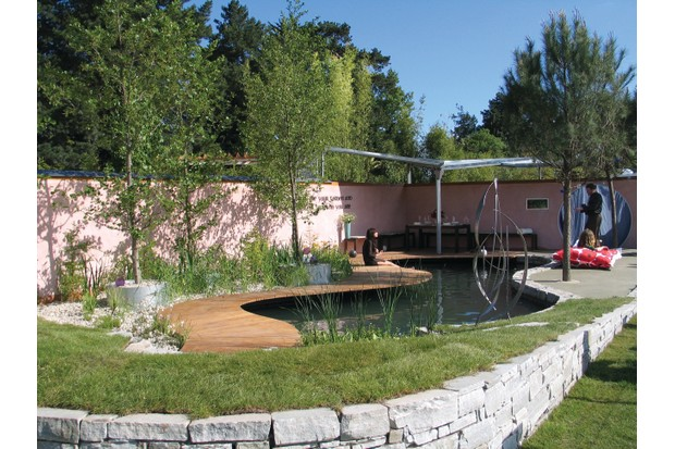 Eco swimming pool in a garden with surrounding plants, trees and a stone built wall. Designed by Irish designer Elma Fenton
